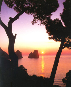 <b>The Faraglioni Rocks of Capri island</b>
