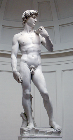 <b>The David in the Accademia Gallery</b>