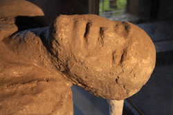 <b>Example of plaster cast in Pompeii</b>