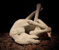 <b>Plaster cast of dog at Pompeii</b>